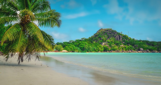 Seychelles citizenship by investment